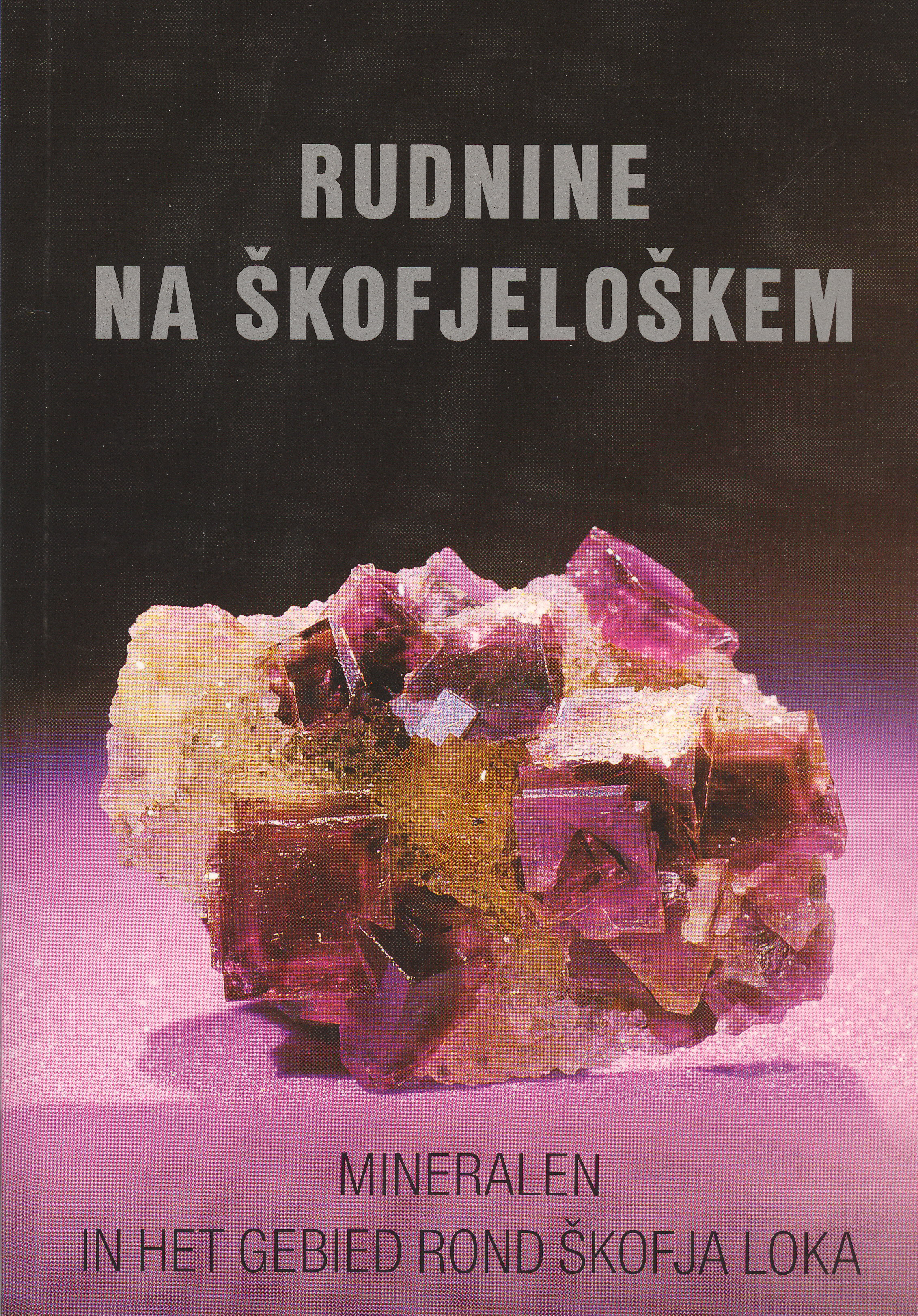 RUDNINE NA ŠKOFJELOŠKEM Book Cover
